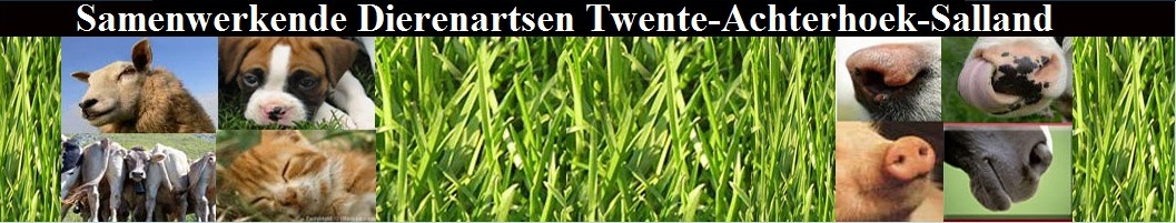 Dierenartsen Twente Achterhoek-Salland